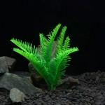 Décoration aquarium Arbre artificiel d'herbe en Figurines Miniatures poissons d'aquarium Paysage Réservoir, Petite taille: 12...